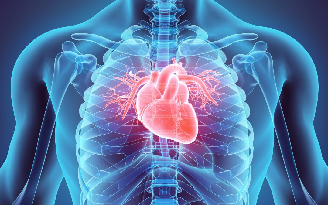 Local Heart Attack Prevention Screening Receives